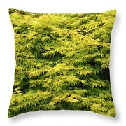 Leave It Alone Throw Pillow
