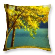 Leaves And Light Throw Pillow