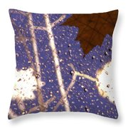Leaves And Rain 2 Throw Pillow
