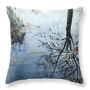 Leaves And Reeds On Tree Reflection Throw Pillow