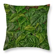 Leaves By The Way Throw Pillow