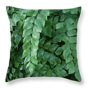 Leaves Cascading Throw Pillow