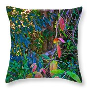 Leaves Changing Color As Autumn Approaches In Iguazu Falls National Park-argentina   Throw Pillow
