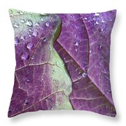 Leaves, Color,  And Dew Throw Pillow