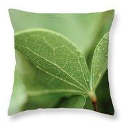 Leaves, Fresh Throw Pillow
