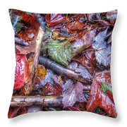 Fall Leaves From The Land North Of Nowhere Throw Pillow