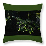 Leaves In Filtered Light  Throw Pillow