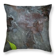 Leaves In Ice At Upper Creek Falls Throw Pillow