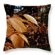 Leaves In Late Autumn Throw Pillow
