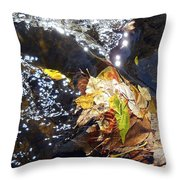Leaves In River Throw Pillow
