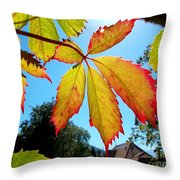 Leaves In Sunlight 4 Throw Pillow