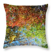 Leaves Of All Colors Throw Pillow