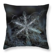 Leaves Of Ice Throw Pillow by Alexey Kljatov