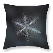 Leaves Of Ice II Throw Pillow