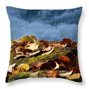 Leaves On Rock By River Throw Pillow