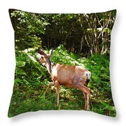 Leaving The Road Throw Pillow