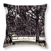 Lee's Ranch 2 Sepia Throw Pillow