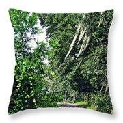 Lee's Ranch 6 Throw Pillow