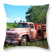 Left In The Field Throw Pillow