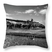 Legend Of The Bear Wyoming Devils Tower Panorama Bw Throw Pillow