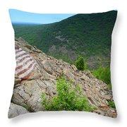 Lehigh Gap Throw Pillow