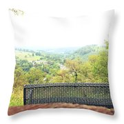 Lehigh Valley Zoo Throw Pillow