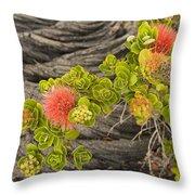 Lehua Flower Throw Pillow