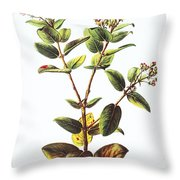 Lehua Ohia Art Throw Pillow