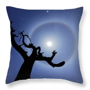 Lei Wang 08 Throw Pillow