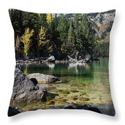 Leigh Lake Cove Throw Pillow