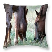 Leisure Throw Pillow