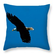 Leisure Flight Throw Pillow