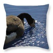 Leisure Time  Throw Pillow