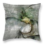 Lemniscatic Fancy  Id 16098-021154-72823 Throw Pillow
