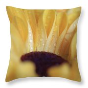 Lemon Drop Throw Pillow