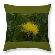 Lemon Fluff Throw Pillow
