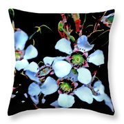 Lemon Scented Tea Tree  Throw Pillow