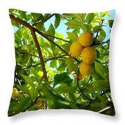 Lemon Tree Throw Pillow