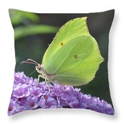 Lemon Wings Throw Pillow