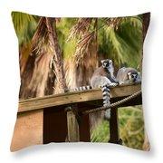 Lemur Couple Throw Pillow