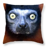 Lemur Glare Throw Pillow