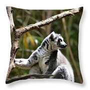 Lemur Love Throw Pillow
