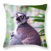 Lemur's Gaze Throw Pillow