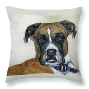 Lennox Throw Pillow