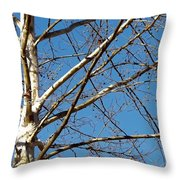 Lenox Sky Throw Pillow