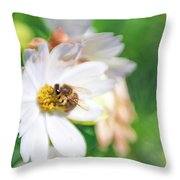 Lensbabee 1 Throw Pillow