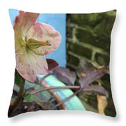 Lenten Rose After An April Shower Throw Pillow
