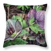 Lenton Rose Throw Pillow