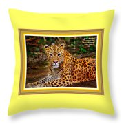Leopard Beauty Catus 1 No. 1 L A With Decorative Ornate Printed Frame Throw Pillow