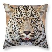 Leopard Close Up Throw Pillow